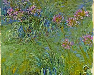 Agapanthus, Claude Monet, 1914-26, MOMA, New York