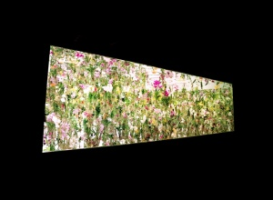 the entrance of the exhibition floating flower garden