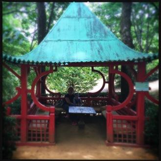 The Chinese Pagoda