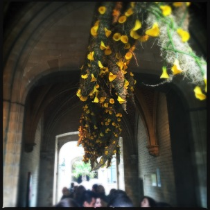 Entrance decorated by De Groene Verbeelding with abstract nest filled with yellow callas.