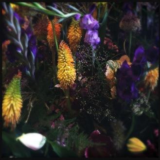 Flowercreations by Tom Nackaerts