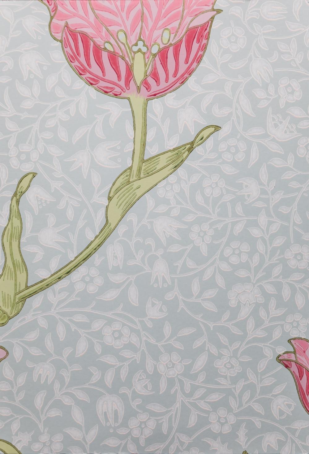 garden-tulip